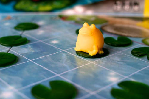 Keltainen sammakko vauhdissa. Kuva: Mikko Saari