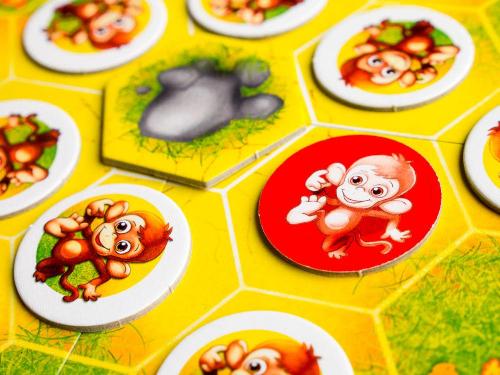 Apina lähikuvassa. Kuva: Mikko Saari