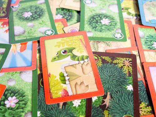 Dino Racen kortit. Kuva: Mikko Saari